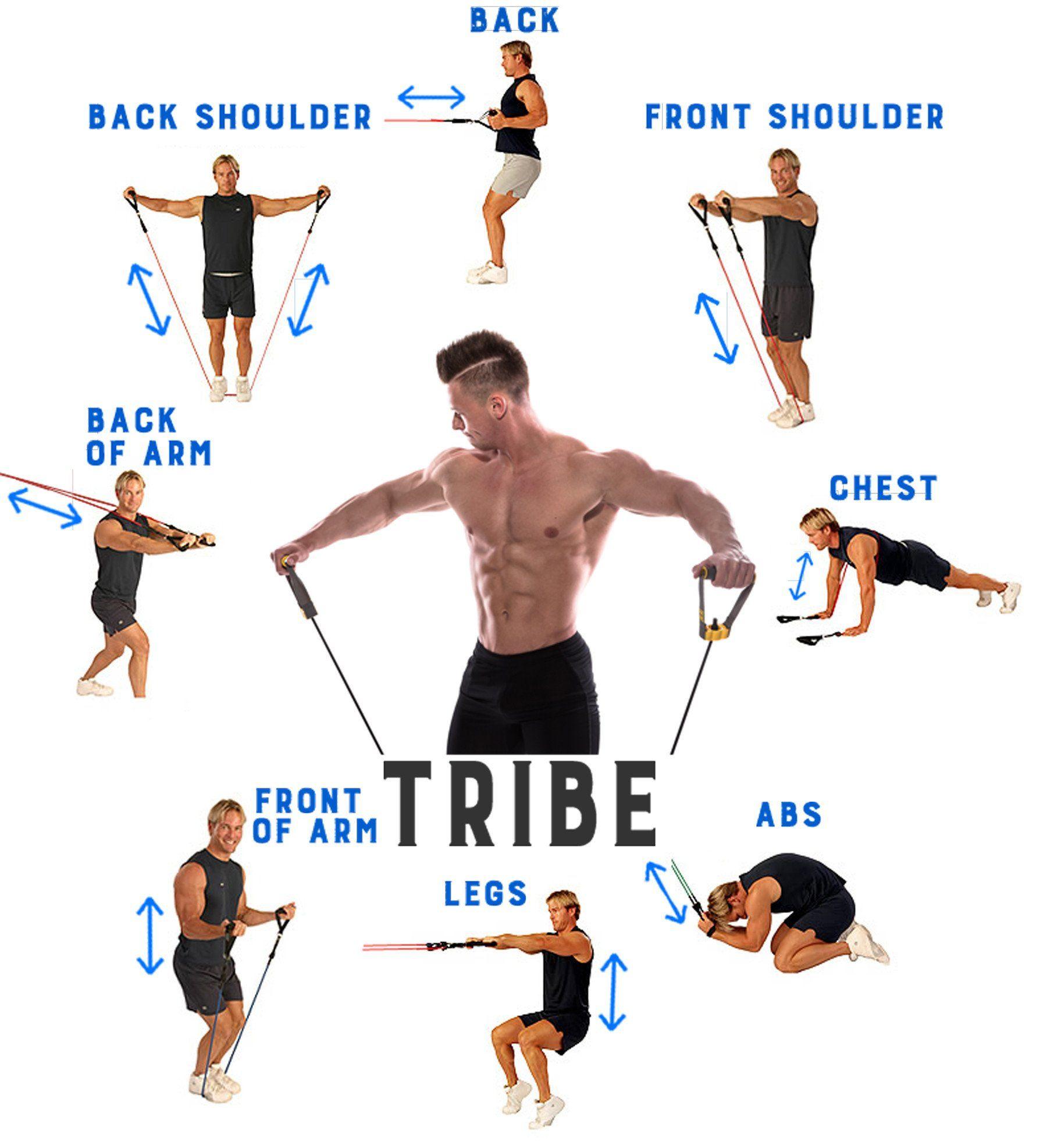 instructions for santek fitness band