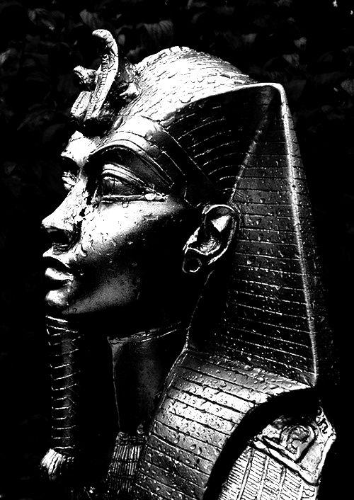 the black god an anthology of truth pdf
